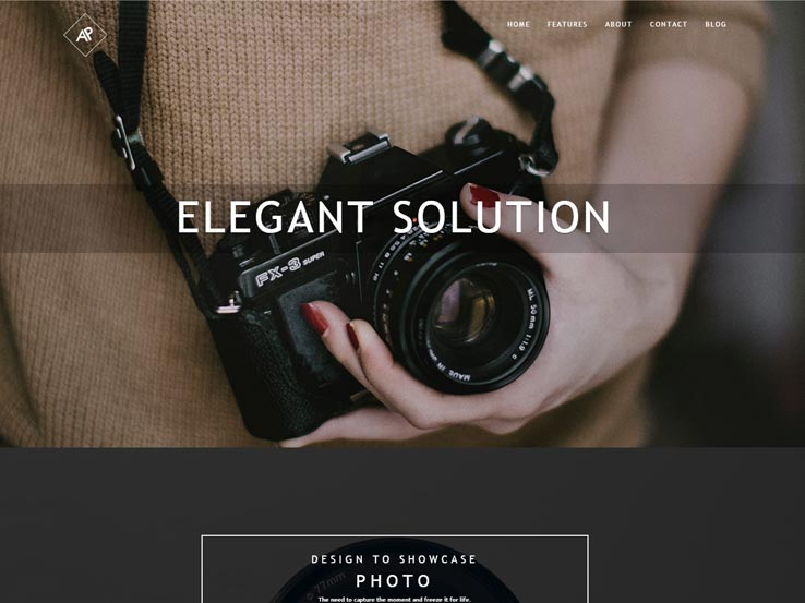 RokoPhoto-Wordpress-Theme