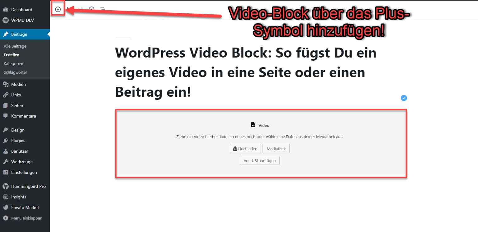 Video in WordPress