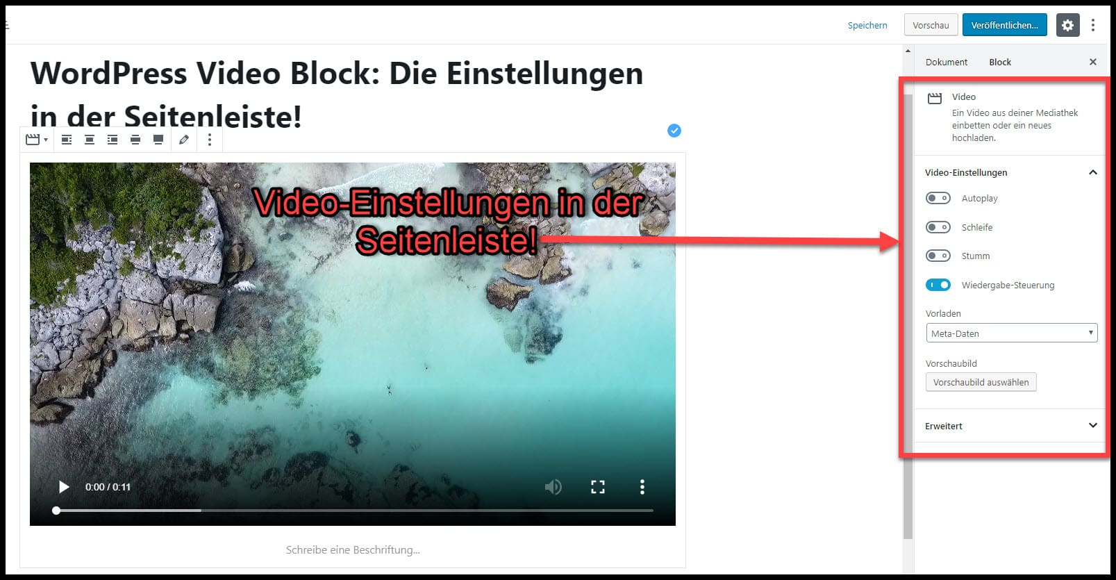 Einstellungen für WordPress Videos